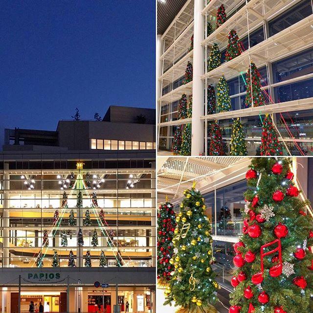 #パピオスあかし の #クリスマスツリー です♪ #明石市